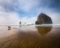 Haystack Rock #1, Cannon Beach, Oregon