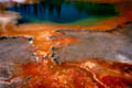 Geyser Pool #1, Yellowstone National Park, Wyoming