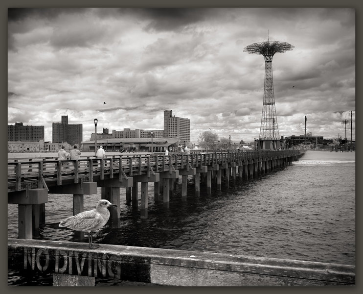 No Diving, Coney Island, New York