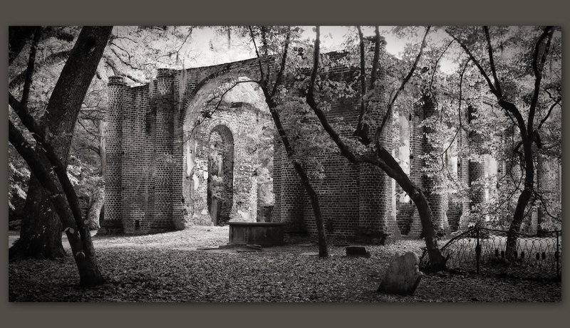 Ruins of Sheldon Church #2, South Carolina