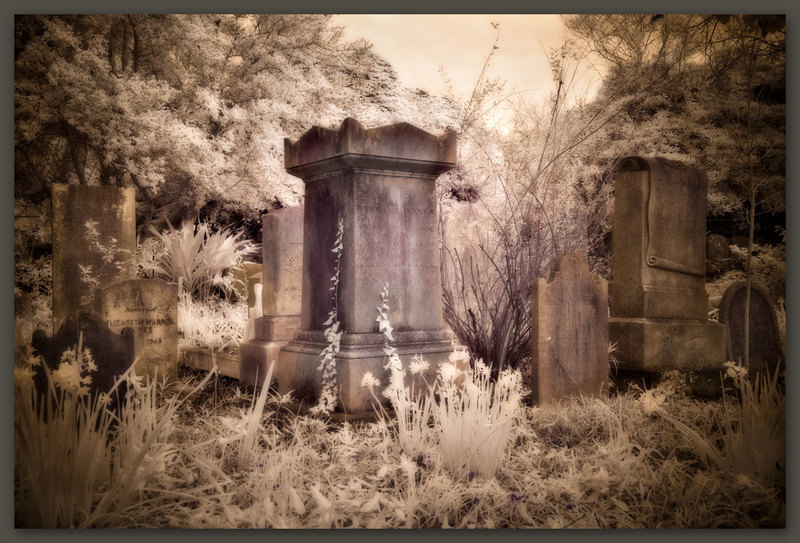 Unitarian Cemetery #6, Charleston, South Carolina