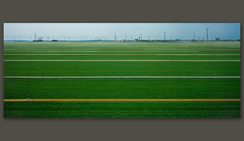 Field, Oxnard, California